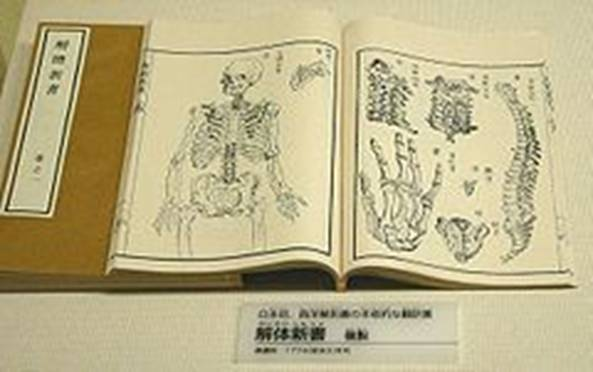 https://upload.wikimedia.org/wikipedia/commons/thumb/8/85/First_Japanese_treatise_on_Western_anatomy.jpg/240px-First_Japanese_treatise_on_Western_anatomy.jpg